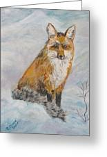 Sitting Sly Greeting Card by Caroline Owen-Doar