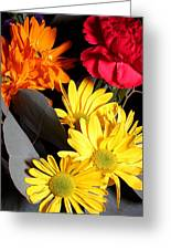 Six Dasies And A Carnation Greeting Card