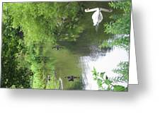 Six Flags Great Adventure - Animal Park - 121273 Greeting Card