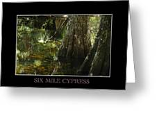 Six Mile Cypress Fort Myers Florida Greeting Card