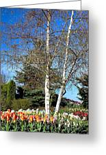 Skagit County April Greeting Card