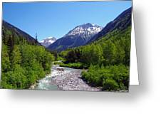 Skagway 5 Greeting Card
