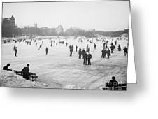 Skating In Central Park Greeting Card by Anonymous