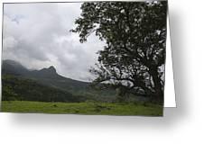 Skc 4006 Customized Landscape Greeting Card