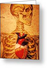 Skeleton And Heart Model Greeting Card by Garry Gay