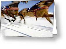 Ski Joring Race Greeting Card