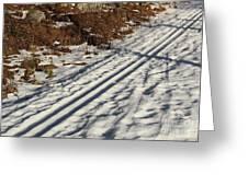 Ski Track In Sunlight In Spring Greeting Card