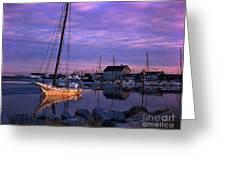 Skipjack Greeting Card