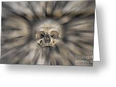 Skull - Fear And Trembling  Greeting Card