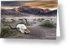 Skull In The Desert Greeting Card