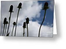 Sky Flowers Greeting Card