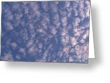 Sky Full Of Cloud Puffs Greeting Card