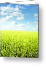 Sky Greens Landscape Greeting Card by Boon Mee