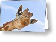 Sky High Giraffe Greeting Card