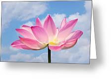 Sky Lotus Greeting Card