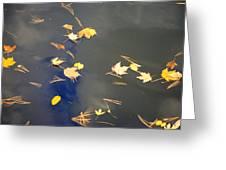 Sky Of Leaves Greeting Card