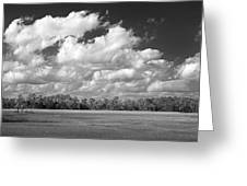 Sky Over St. Marks Greeting Card
