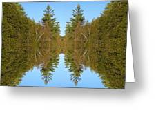 Sky Pines II Greeting Card