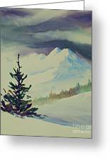 Sky Shadows And Spruce Greeting Card