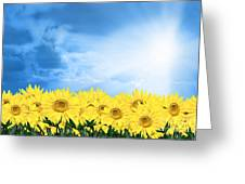 Sky Sunflower Greeting Card