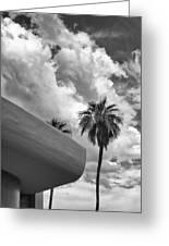 Sky-ward Palm Springs Greeting Card by William Dey