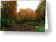Skylands Colors Greeting Card