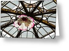 Skylight Blossom Greeting Card