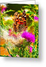 Skyline Butterfly Greeting Card