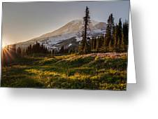 Skyline Meadows Sunstar Greeting Card