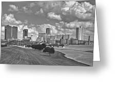 Skyline Of Fort Worth Greeting Card