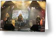 Skynyrd-group-7063 Greeting Card