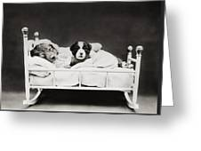 Sleep Over Greeting Card by Aged Pixel