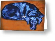 Sleeping Blue Dog Labrador Retriever Greeting Card