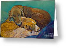 Sleeping Double In A Single Bed Greeting Card