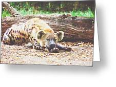Sleeping Hyena Greeting Card