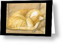 Sleeping Orange Tabby Cat Cathy Peek Animals Greeting Card