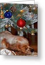 Sleeping Under The Tree II Greeting Card