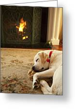 Sleepy Puppy Greeting Card