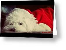Sleepy Santa Greeting Card