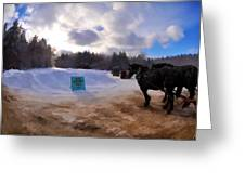 Sleigh Rides Greeting Card