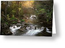 Slice Of Heaven Greeting Card by William Schmid