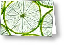 Slices Lime. Greeting Card by Slavica Koceva