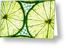 Slices Of Lemon. Greeting Card