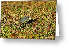 Slider To Go Greeting Card