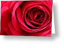 Slimline Red Greeting Card