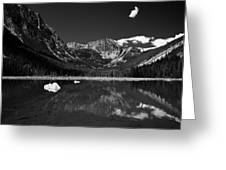 Slough Lake 3 Bw Greeting Card by Roger Snyder