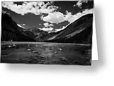 Slough Lake 5 Bw Greeting Card