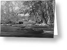 Slow Down At The River Greeting Card