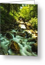 Slow Moving River Greeting Card