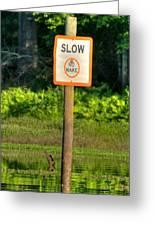 Slow No Wake Greeting Card